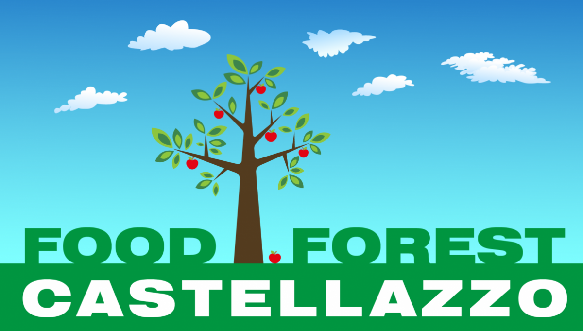 FOODFOREST-sky_0